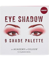 9 Shade Eyeshadow Palette by academy of colour