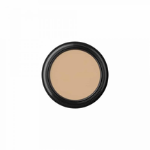 Oilfree Camouflage Concealer by Glo Skin Beauty
