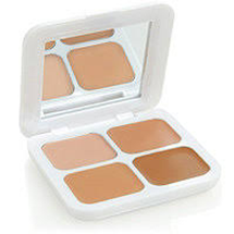 Flawless Concealer Palette by models own