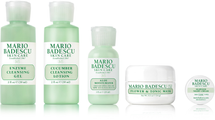 Combo/Oily Skin Regimen Kit by mario badescu