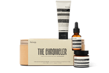 The Chronicler by aesop