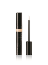 Perfecting Concealer by mary kay
