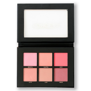 Blush Palette by Profusion