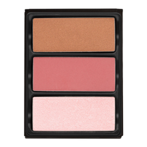 Theory I Enamored Highlighter, Blush & Bronzer by Viseart