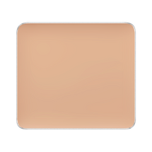 Freedom System Camouflage Concealer by Inglot
