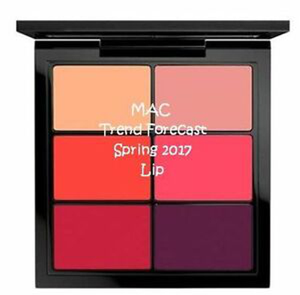 Trend Forecast Lip Palette - Spring 17 by MAC